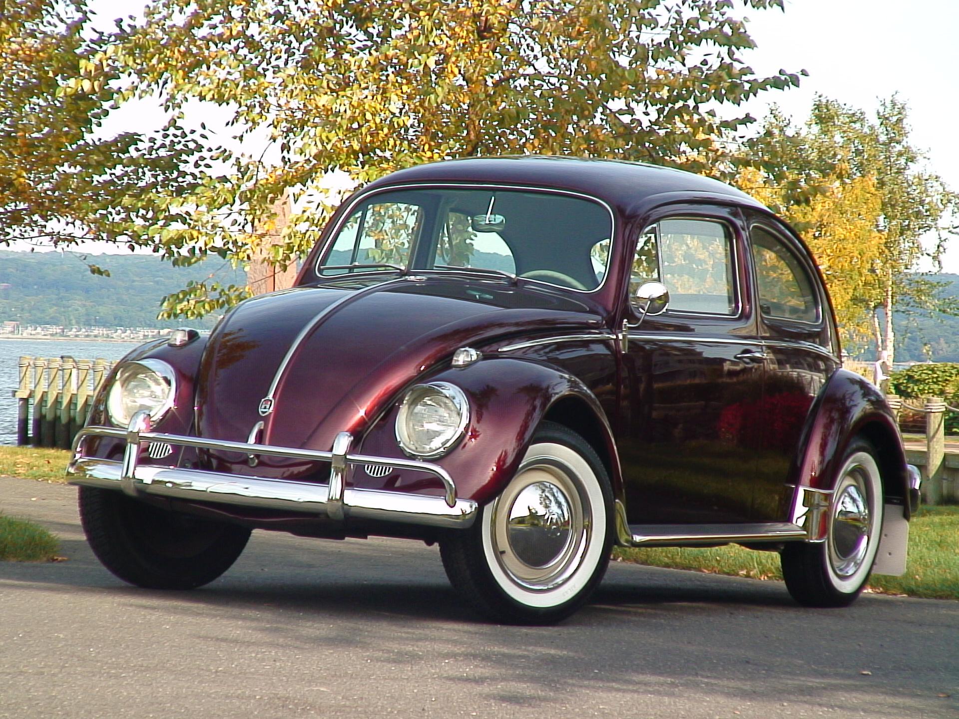 Volkswagen Beetle Sedan 1950